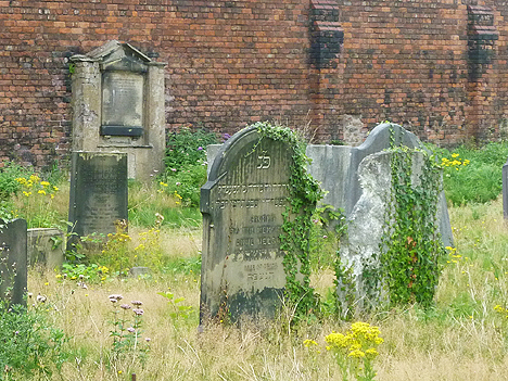 Mind the knotweed: cemetery headstones